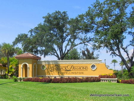 Black Diamond Wellington Florida Real Estate