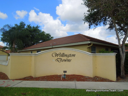Wellington Downs Homes for Sale in Wellington Florida