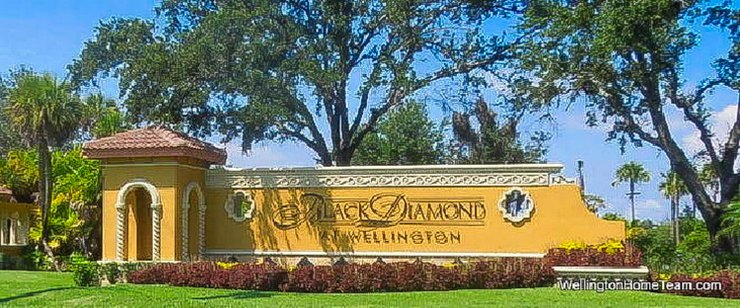 Black Diamond Recent Home Sales in Wellington Florida
