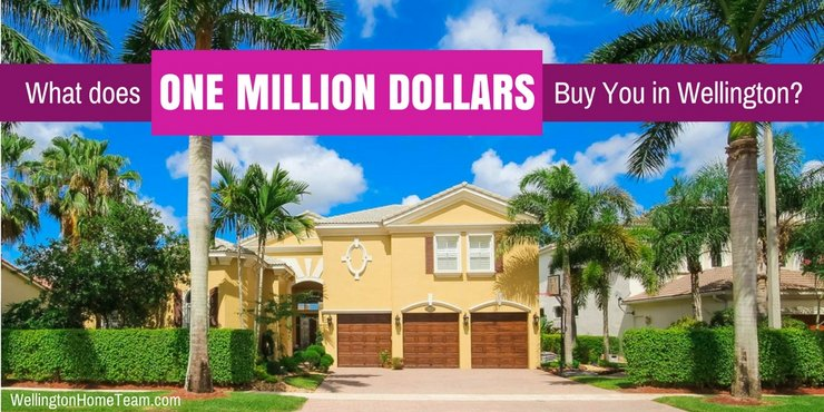 What does One Million Dollars Buy you in Wellington Florida