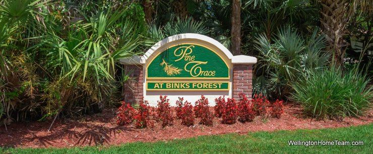 Pine Trace at Binks Forest Homes for Sale in Wellington Florida and Real Estate