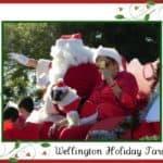 Wellington Holiday Parade 2011 | Wellington Holiday Events