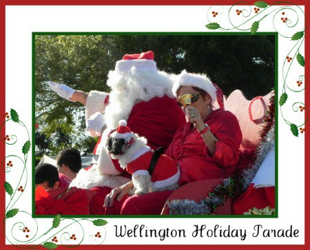 Wellington Holiday Parade 2011 | Wellington Holiday Events