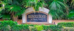 Brindlewood at Binks Forest Homes for Sale in Wellington Florida