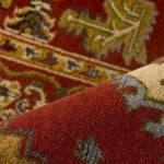 Wellington Carpet Cleaning | Do you need to get your Carpet Cleaned?
