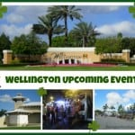 Things to Do In Wellington the Week of March 23rd, 2015
