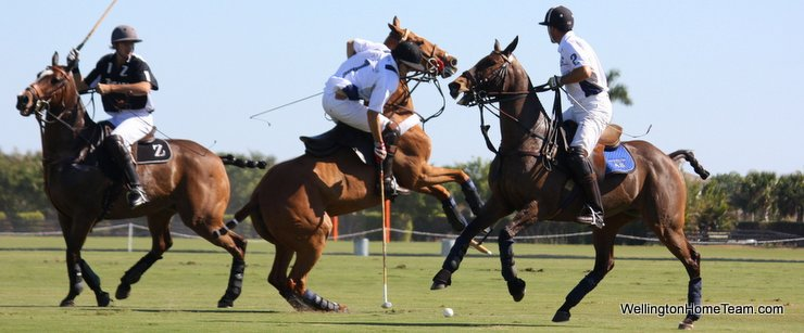 Wellington Florida Polo and Equestrian