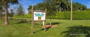 Saddle Trail Park Wellington Florida Real Estate & Homes for Sale