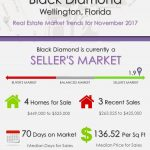 Black Diamond Wellington, FL Real Estate Market Trends | NOV 2017