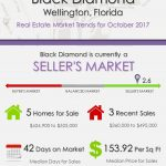 Black Diamond Wellington, FL Real Estate Market Trends | OCT 2017
