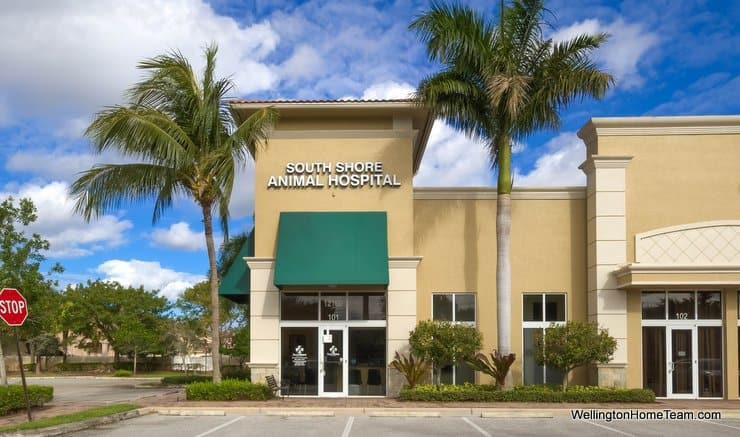 Best Veterinarian in Wellington Florida Dr Forbes South Shore Animal Hospital Wellington Florida 33414