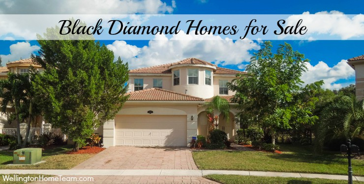 Black Diamond Homes for Sale in Wellington Florida 33414