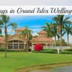New Listings in Grand Isles Wellington Florida