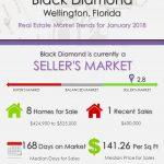 Black Diamond Wellington Florida Real Estate Market Report | JAN 2018