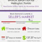 Black Diamond Wellington Florida Real Estate Market Report NOV 2018