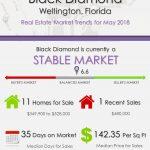 Black Diamond Wellington Florida Real Estate Market Report MAY 2018