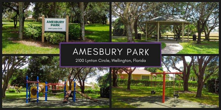 Amesbury Park Wellington Florida Real Estate