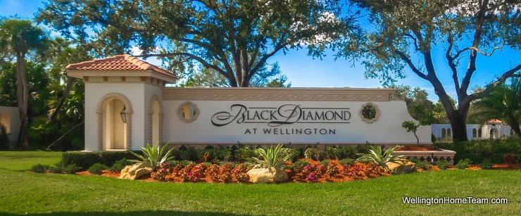 Black Diamond Wellington Florida Real Estate and Homes for Sale