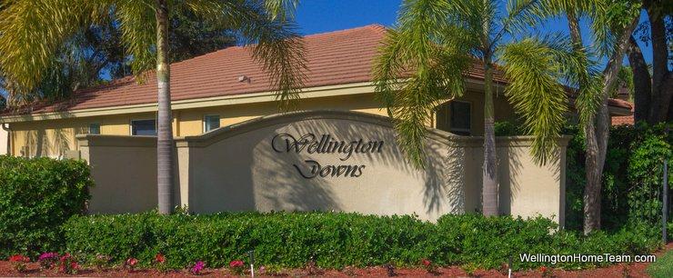 Wellington Downs Wellington Florida Real Estate & Homes for Sale