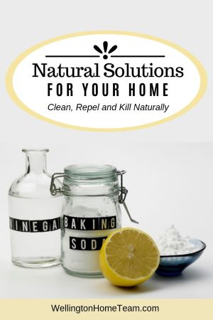 Natural Solutions for Your Home | Clean, Repel & Kill Naturally