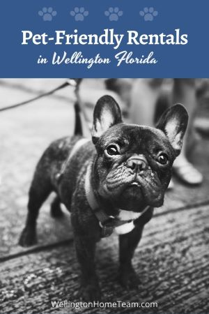 Pet-Friendly Rentals in Wellington Florida | View Pet-Friendly Rentals Here