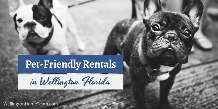 Pet-Friendly Rentals in Wellington Florida
