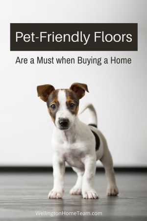 Buying a Home with Pets 5 Things to Consider - Pet-Friendly Floors