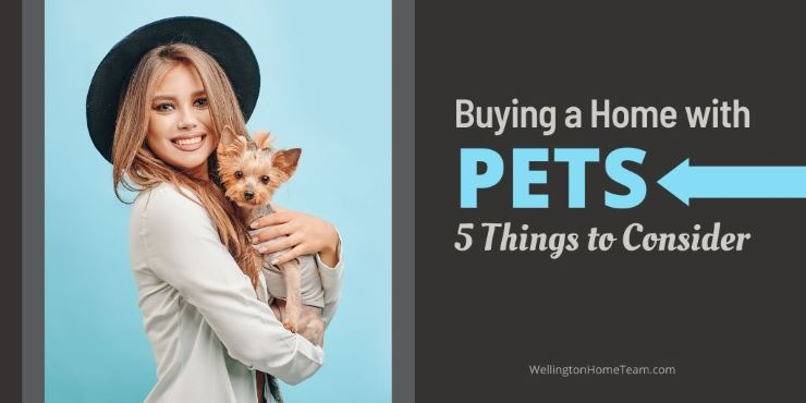 Buying a Home with Pets 5 Things to Consider