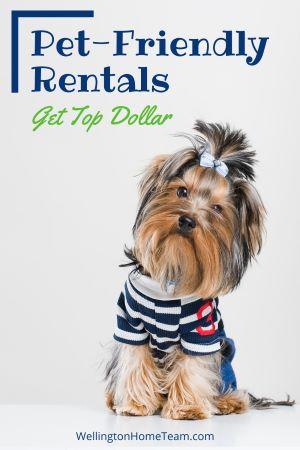 Should I Allow Pets in My Rental Property - Pet Friendly Rentals