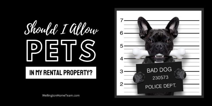 Should I Allow Pets in My Rental Property