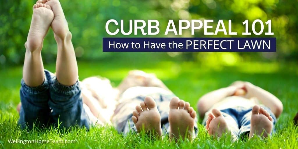 Curb Appeal 101 _ How to Have a Perfect Lawn